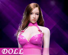 DL1676 1/6 Sexy Lady leather suit D (DOLL)