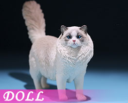 DL2407 1/6 Ragdoll E (DOLL)