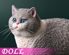 DL4618 1/6 Fat Cat G (DOLL)