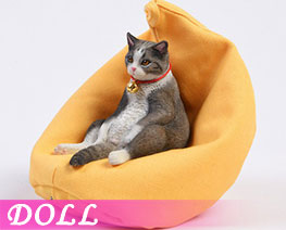DL3644 1/6 American Shorthair B (DOLL)