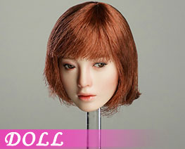 DL1904 1/6 Movable Female Head D (DOLL)
