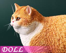 DL4612 1/6 Fat Cat A (DOLL)