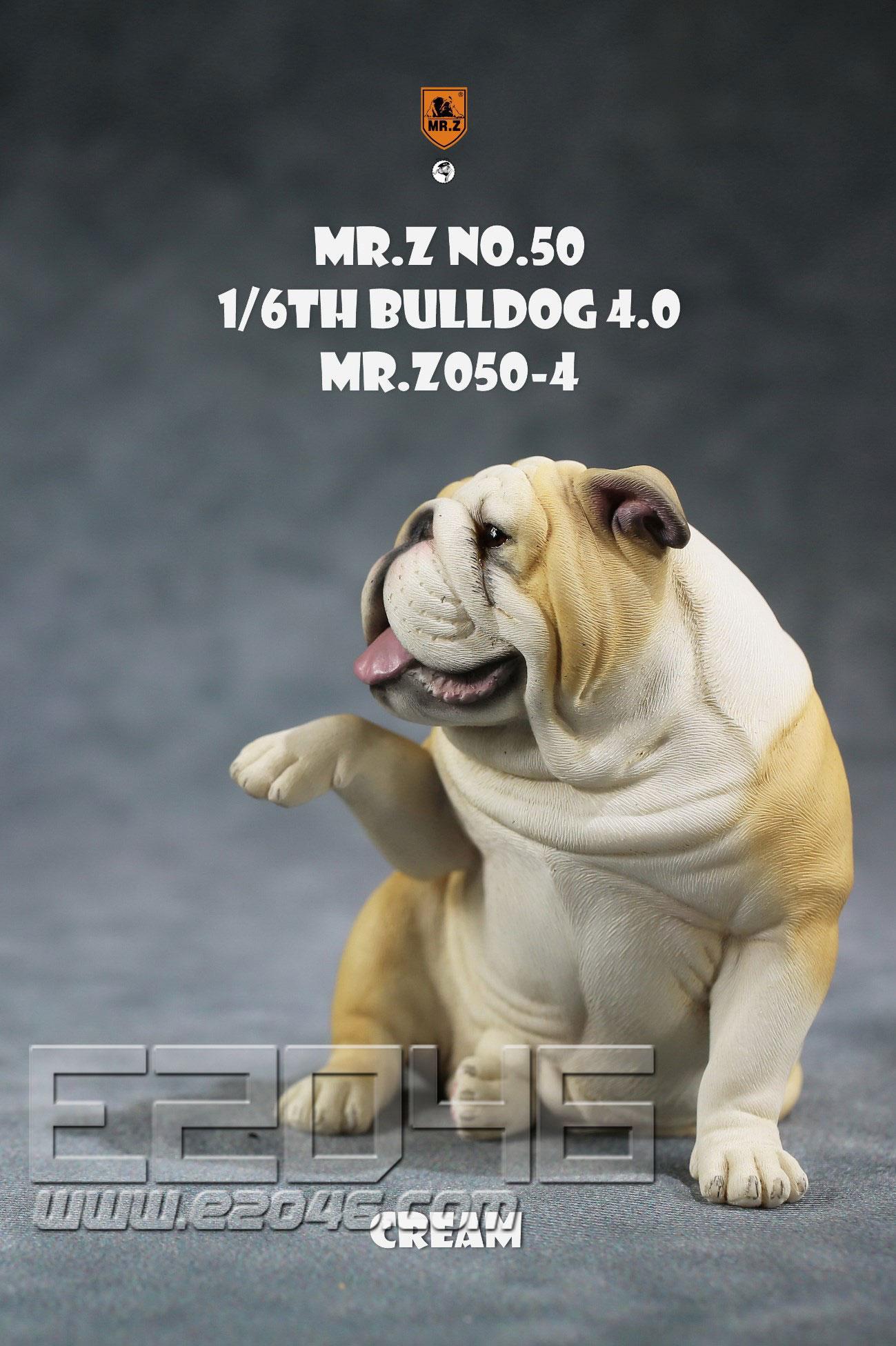 Bulldog D (DOLL)