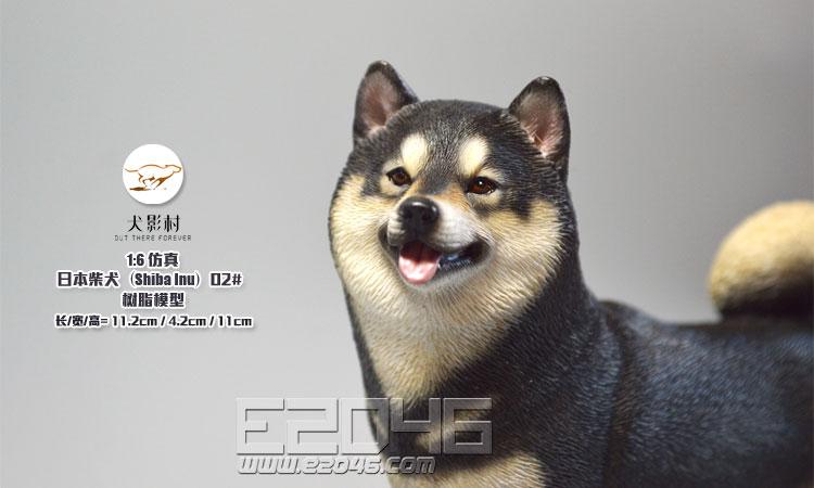 Shiba Inu Black (DOLL)
