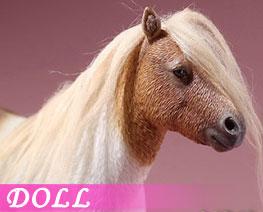 DL2672 1/6 Shetland Pony E (DOLL)
