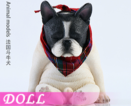DL4022 1/6 French Bulldog C (DOLL)