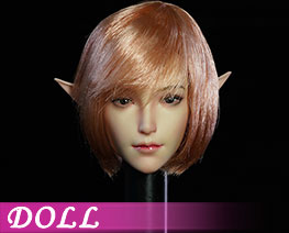 DL3263 1/6 Female Head C (DOLL)