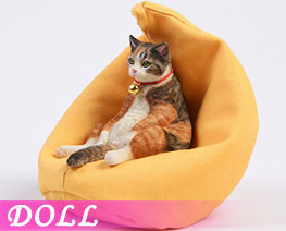 DL3643 1/6 American Shorthair A (DOLL)