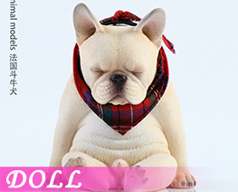 DL4021 1/6 French Bulldog B (DOLL)