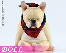 DL4023 1/6 French Bulldog D (DOLL)