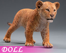 DL2522 1/6 Simba And Nala B (DOLL)