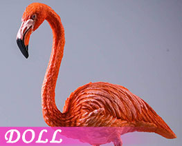 DL3681 1/6 Flamingo A (DOLL)