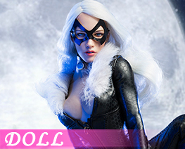 DL1868 1/6 Catwoman Set (DOLL)