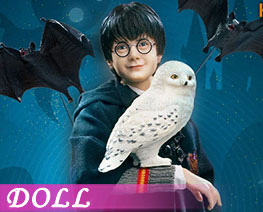 DL2072 1/6 Harry Potter (DOLL)