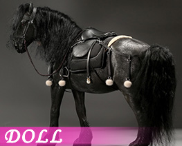 DL4645 1/6 Shire Horse 2.0 E Set (DOLL)
