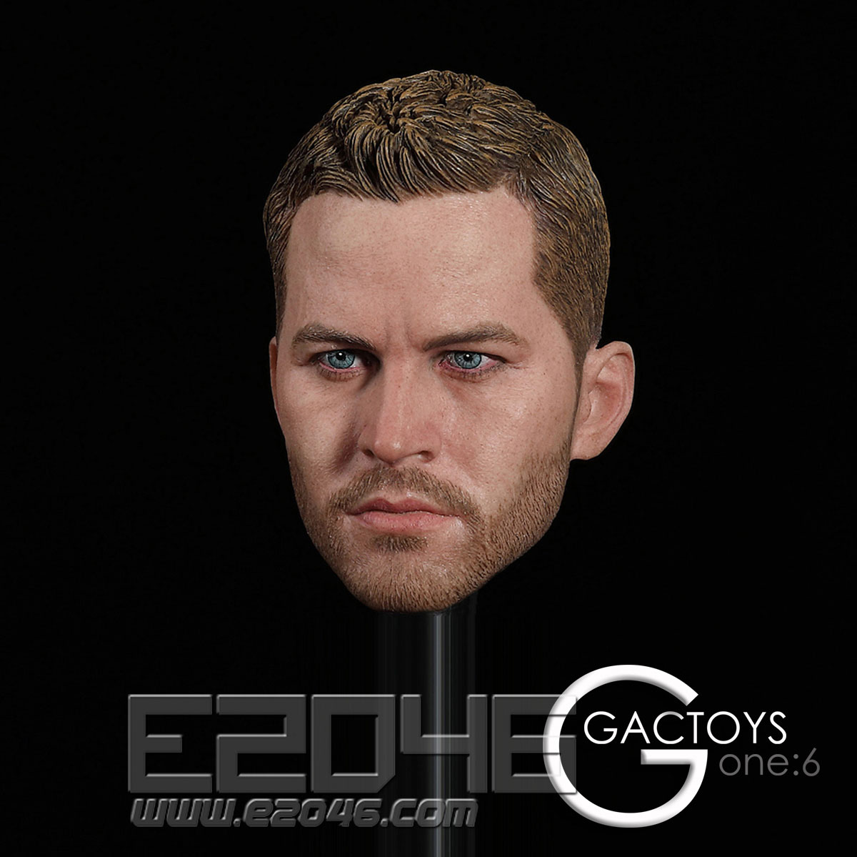 Occident Male Head (DOLL)
