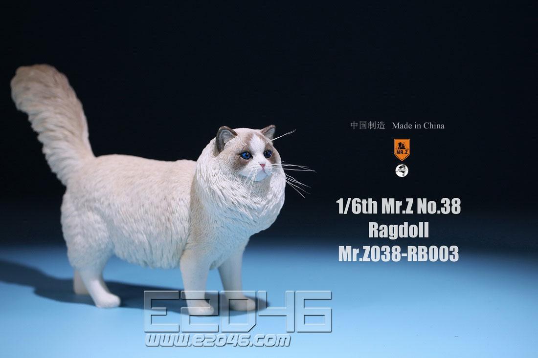布偶猫植须版 C (人偶)