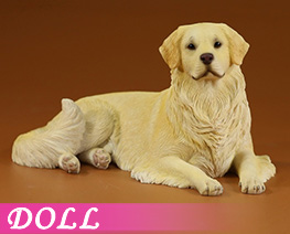 DL4628 1/6 Golden Retriever 2.0 C (DOLL)