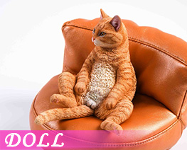 DL4091 1/6 Chinese Garden Cat D (DOLL)