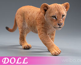 DL2524 1/6 Simba And Nala D (DOLL)