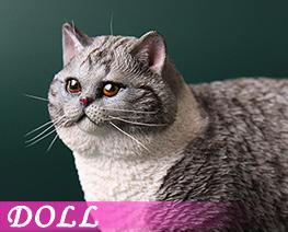 DL4615 1/6 Fat Cat D (DOLL)