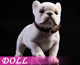 DL3301 1/6 Tufting French Bulldog C (DOLL)