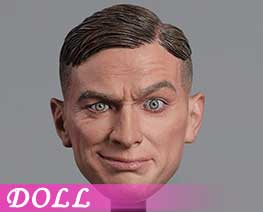 DL2582 1/6 European And American Expression Male Head (DOLL)