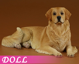 DL4632 1/6 Golden Retriever 2.0 G (DOLL)