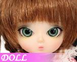 DL0024  Camellia