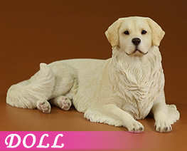 DL4626 1/6 Golden Retriever 2.0 A (DOLL)