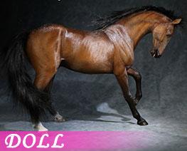 DL3617 1/6 Akhal Teke Horses C (DOLL)