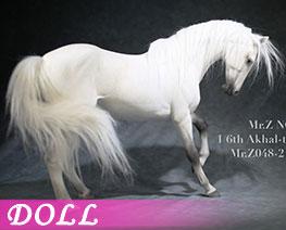 DL3616 1/6 Akhal Teke Horses B (DOLL)