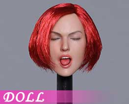 DL1778 1/6 Sexy female head E (DOLL)