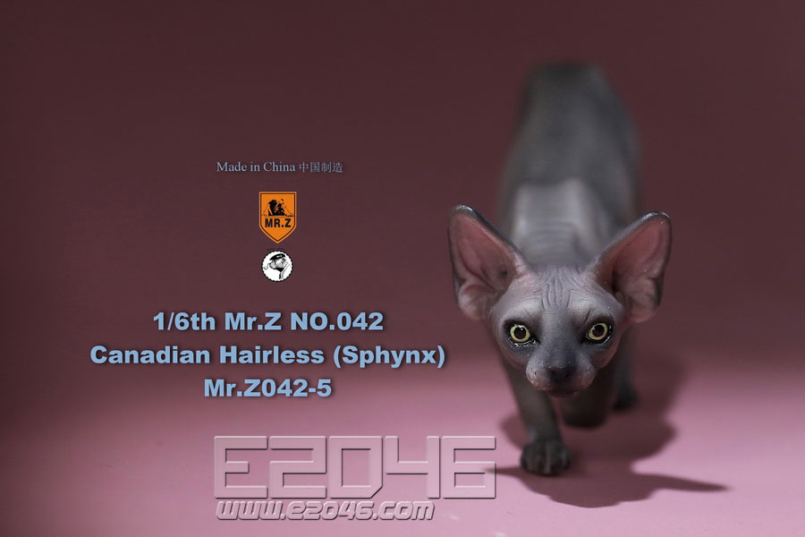 Canadian Hairless Cat E (DOLL)