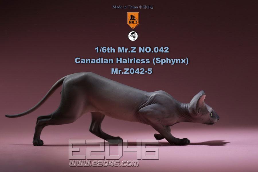 加拿大无毛猫 E (人偶)