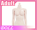 DL0880 1/6 Steel skeleton femalebody white skin color B (Doll)