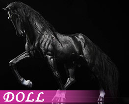 DL2293 1/6 The Black Horse (DOLL)