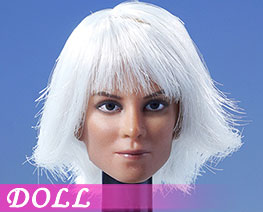 DL2283 1/6 European Model Of Female Head With Hair Transplant A (DOLL)