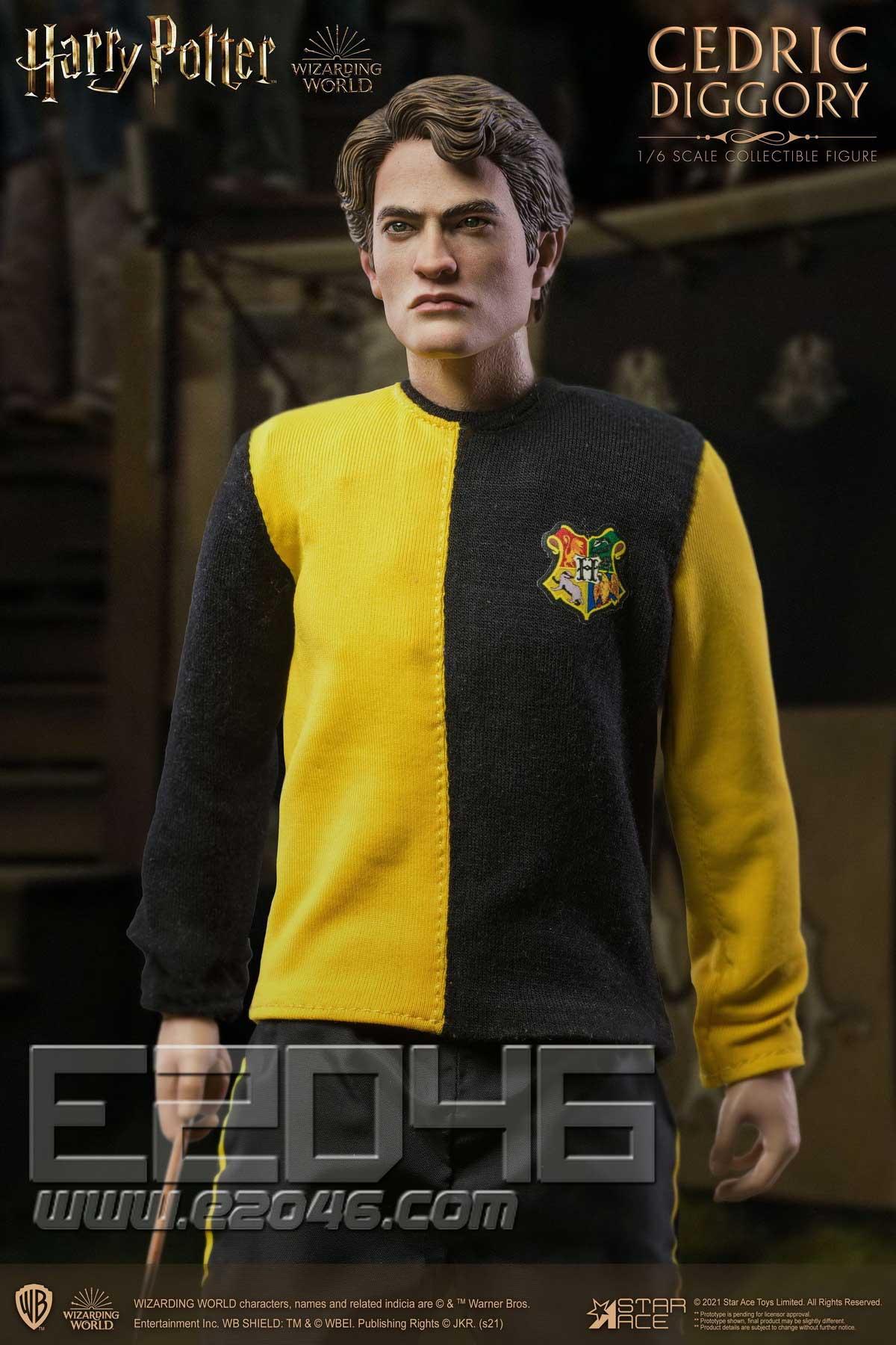 Cedric Diggory Standard Version (DOLL)