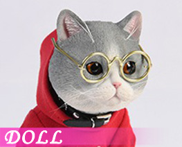 DL4543 1/3 American Shorthair A (DOLL)