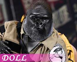 DL1571 1/6 Gorilla  Beringei  Graueri Black (DOLL)