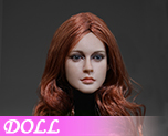 DL0883 1/6 Long hair female head (Doll)