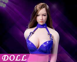 DL1677 1/6 Sexy Lady leather suit E (DOLL)