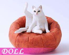 DL4682 1/6 Lazy Cat D (DOLL)