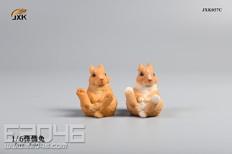 Dwarf Rabbit C (DOLL)