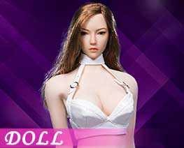 DL1673 1/6 Sexy Lady leather suit A (DOLL)