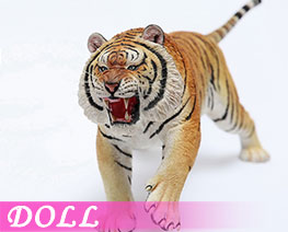DL2420 1/6 Panthera Tigris Altaica A (DOLL)