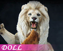 DL1701 1/12 African Lion VS Spotted Dog Set B (DOLL)