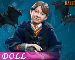 DL2073 1/6 Ron Weasley (DOLL)