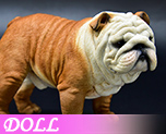 DL1162 1/4 Bulldog A (Doll)